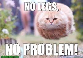 NO LEGS, NO PROBLEM! - graceful cat - quickmeme via Relatably.com