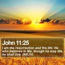 Image result for John 11:25