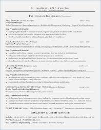 Stylish Decoration Resume Writing Services Dc Professional Resume