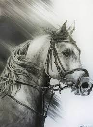 wild horse drawings in pencil. Perfect Wild Wild Horse Sketches Pencil  Wwwimgkidcom For Drawings In