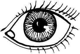 Small Picture eyes coloring page eye coloring page futpal free online Syougitcom