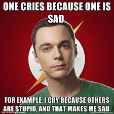 sheldon-cooper-meme-lol-funny-pictures-The-Big-Bang-Theory-flash ... via Relatably.com