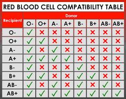 Blood Transfusion Chart Compatibility Blood Transfusion Immune Response