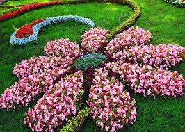 floral garden. Flower Shaped Floral Garden Layout