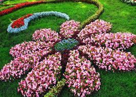 flower shaped fl garden layout