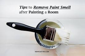 24 tips to remove paint smell after painting a room