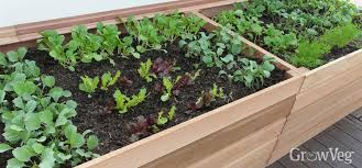 garden beds. raised planters make gardening easier for gardeners who are less able to bend garden beds