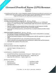 Resume Format Template Word Cocinacolibri Com