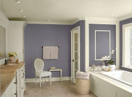 Benjamin Moore Gray Bathroom Absolutely Love The Paint Color Sherwin Williams Mink Allison Rice