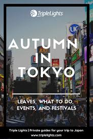 Triple Lights Tokyo Pin By Japan Tours By Triplelights On Japan Tips