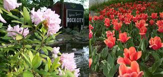 rock city flowers