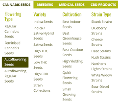 Cannabis Strain Chart The Definitive Guide To Marijuana Seeds Types Strains