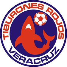 Fútbol de estufa rumbo al Apertura 2013 Liga MX