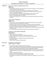 Cash Supervisor Resume Samples Velvet Jobs