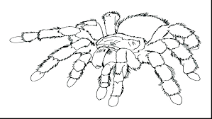 Free Print Coloring Pages Coloring Pages Free To Print Free