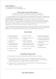 Senior Level Business Development Executive Resume Templates At