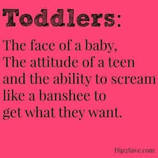 Toddler Quotes Delectable Toddler Quotes Extraordinary Best 48 Toddler Quotes Ideas On