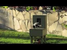 "Crow Vending Machine Beauteous Crow Uses A Vending Machine 48 ""Crow Box"" ""Crow Kit YouTube"