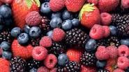 beberapa bahan makanan yang dapat membantu tingkatkan fungsi otak si kecil