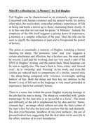 ted hughes example essays cadenza a memory and  a memory example essay docx