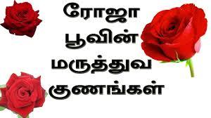 rose flower cinal uses in tamil