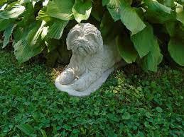shih tzu concrete statue breed