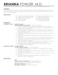 Resume Summary Statement Amazing Resume Summary Statement Examples Sales Professional Example Of Job