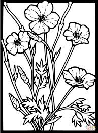 Flowers Coloring Pages Select From 26073