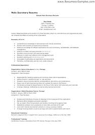 Secretary Resume Objective Secretary Resume Templates Secretary
