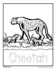 Zoo Animal Coloring Pages Zoo Babies Zoo Babies Cheetah Classroom