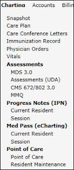 Point Of Care Charting Viewing Submitted Documentation Poc