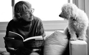 review upstream selected essays by mary oliver com photo by rachel giese brown mary oliver