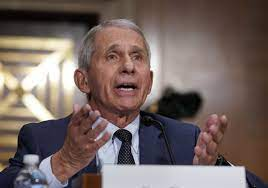Fauci says U.S. is turning the corner on COVID surge, and more need to get  vaccinated