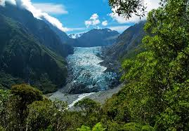 Image result for fox glacier