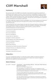 Lieutenant Resume Samples Visualcv Resume Samples Database