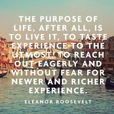 Purpose Of Life Quotes 63 Awesome Our Purpose In This Life Is To Try And Enjoy Every Moment Eleanor