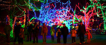 tree lighting indianapolis. strikingly ideas christmas lights indianapolis delightful make the most of your at zoo experience tree lighting