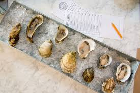 Oyster Identification Chart A Brief Guide To Oysters And Their Shells Edible Brooklyn