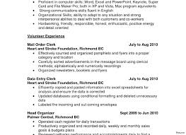 Resume Accent Amazing Resume With Correct Accents Photos Wordpress Themes 93