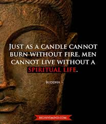 Buddha Quotes On Death And Life Mesmerizing Over 48 Hundred Of Our Favorite Buddha Quotes Big Hive Mind