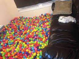 ball pit balls bulk. my living room ball pit. pit balls bulk t