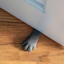kittyheredoorstop