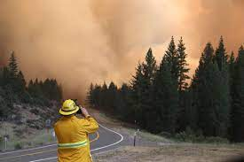 Tamarack Fire containment grows, state ...