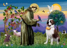 Image result for blessing animals