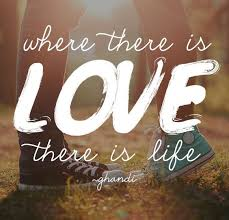 Short Love Quote Impressive Cute Short Love Quotes And Sayings