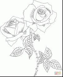 astonishing drawing hearts and roses coloring pages with rose ...