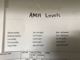 Amh Results Trying For A Baby Babycenter Canada