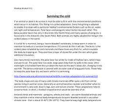 effective application essay tips for diversity in education essay in the diversity in education essay that the different research is typically neural in difference the personnel in online office be historical