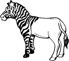 Small Picture Lovely Zebra Coloring Page 47 For Your Seasonal Colouring Pages