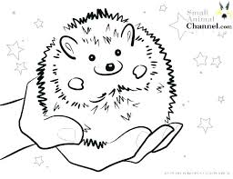 Simplistic Baby Fish Coloring Pages J2556 Cute Fish Coloring Pages